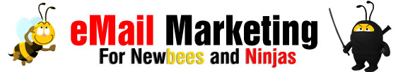 Email Marketing for Newbees and Ninjas