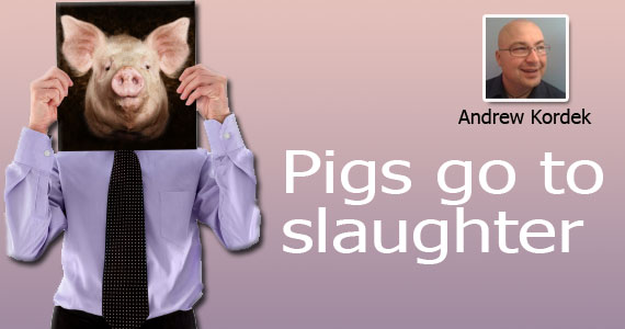 Pigs Go to Slaughter