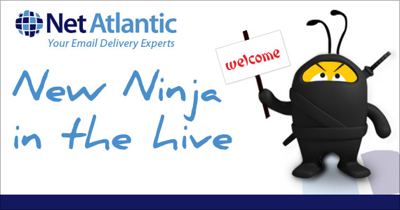 Welcome a New Ninja in the Hive: Net Atlantic Inc.
