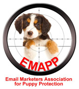 Every time you buy an email list a puppy dies
