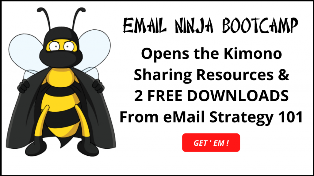 Download FREE eMail Marketing Resources from eMail Ninja Bootcamp –  Strategy 101