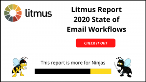 Litmus Report - 2020 State of Email Workflows