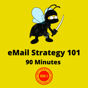 Email Strategy 101 90 Minute Class